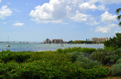 萨拉索塔海湾在佛罗里达 免版税图库摄影