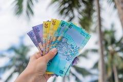 萨摩亚塔拉货币-拿着从西部的左手钞票 免版税库存图片