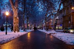萨格勒布,克罗地亚:2016年1月6日:有装饰的树的小径在Zrinjevac公园在萨格勒布在晚上在与雪的冬天 免版税库存照片