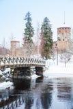 萨翁林纳垂直的冬天风景  库存图片