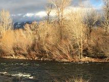 萨蒙河在爱达荷 免版税库存图片