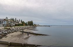 萨里,加拿大- 2018年10月27日:Blackie唾液在界限海湾的公园区域 免版税库存照片
