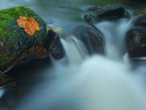 落下在小山小河,水跑在生苔砂岩冰砾,并且泡影在平实乳状水创造 免版税库存图片