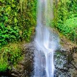 落下在岩石架子下的热带瀑布 库存图片