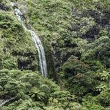 落下在绿色周围的一座山下的瀑布 免版税库存照片