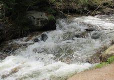 落下的小河在原野 免版税图库摄影