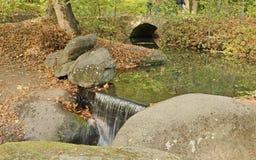 落下的小河在秋天 免版税库存图片