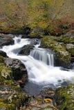 落下的山小河 库存图片