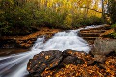落下的水和秋天叶子,北卡罗来纳 库存图片