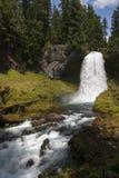 落下的瀑布在俄勒冈 免版税图库摄影