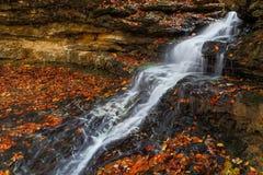 落下的秋天瀑布 库存图片