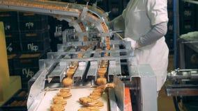 落从传动机的完成的饼干,当人控制过程时 股票视频