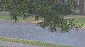 落入在沥青的水坑的雨水下落,充斥路洪水由于大雨在雨季 股票录像