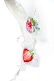 落入牛奶飞溅的草莓 关闭看法,在白色背景 图库摄影