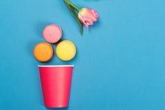 落入红色纸杯的五颜六色的蛋白杏仁饼干 最小的概念 免版税库存图片