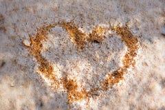 落叶松属下落的针在第一冬天雪下的 落叶松属树黄色针的心脏在雪的 秋天背景特写镜头上色常春藤叶子橙红 免版税库存照片