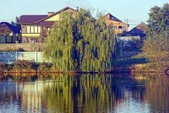 落叶树和农村房子湖的岸的在一个晴天 免版税图库摄影