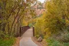 落后入在秋天的西部叉子 库存照片
