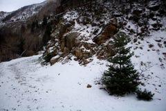落后在岩石峡谷普罗沃的雪 免版税库存照片