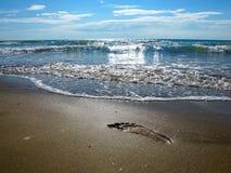落后在海滨的湿沙子的脚 库存图片