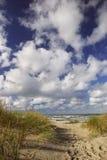 落后的海滩 免版税库存照片