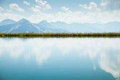 落后的阿尔卑斯奥地利美好的绿色组横向lechtal草甸山muttekopf 库存照片