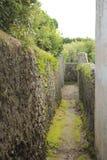 落后, São米格尔亚速尔群岛,葡萄牙海岛的道路  免版税库存照片