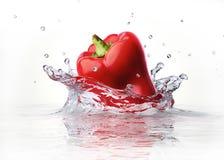 落和飞溅入清楚的水的红色甜椒胡椒。 库存图片