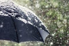 落在一把黑伞的雪剥落 免版税库存图片