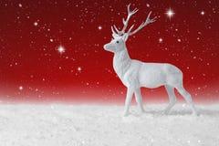 落在圣诞节驯鹿的雪 免版税库存图片