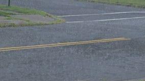 落在夏天雷暴的一条柏油路的大雨 股票录像