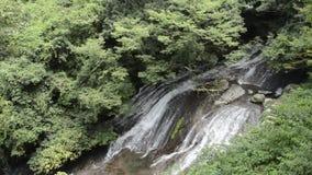 落在岩石大量的瀑布 股票视频