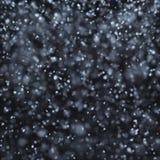 落在晚上的雪 免版税库存照片