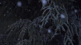 落在晚上04 1的雪 股票视频