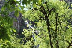 落在树后的瀑布 瀑布Toxa,加利西亚,西班牙 图库摄影