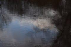 落在池塘的雨珠背景  免版税库存图片