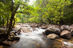 水落在热带森林的小瀑布 库存图片