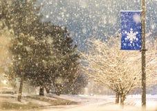 落在车行道的雪 免版税库存照片