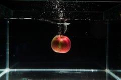 落在水中的苹果计算机 免版税库存图片