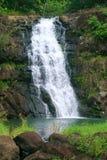 落夏威夷waimea瀑布 免版税库存图片