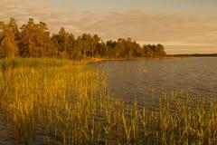 落日Aland (芬兰)照亮的岸 免版税库存图片