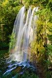 落的春天瀑布, Covington,弗吉尼亚 免版税库存图片