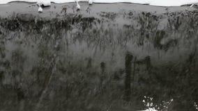 落的雪花,降雪 横向风景冬天 河 股票录像