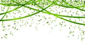 落的绿色五彩纸屑 图库摄影