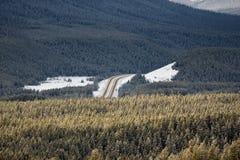 落矶山脉和树在与高速公路的冬天 库存照片