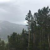 落矶山脉国家公园 免版税库存照片
