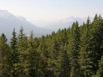 落矶山脉在亚伯大,加拿大 免版税库存图片