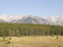 落矶山脉在亚伯大,加拿大 免版税图库摄影