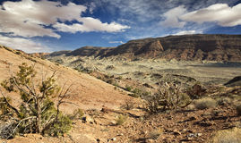 落矶山脉在曲拱国家公园 库存图片