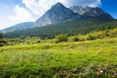 落矶山脉在比利牛斯 免版税库存照片